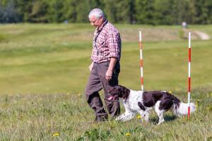 Hundematch (33 of 71)