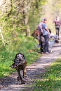 Hundematch (38 of 71)