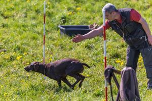 Hundematch (57 of 71)