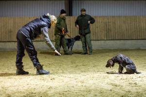 hundetræning I (13 of 16)