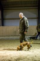 hundetræning I (14 of 16)