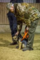 hundetræning I (3 of 16)